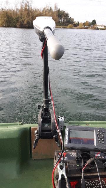Lake Surveys done on larger venues